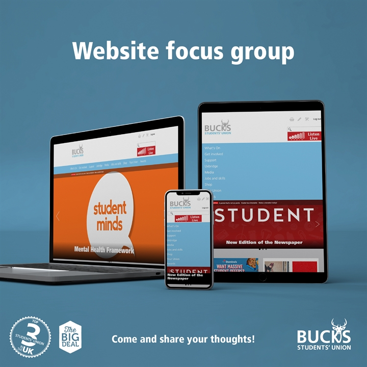Website focus group